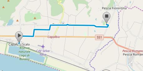 Screenshot_2018-10-10 Route Capalbio - Tarot Garden